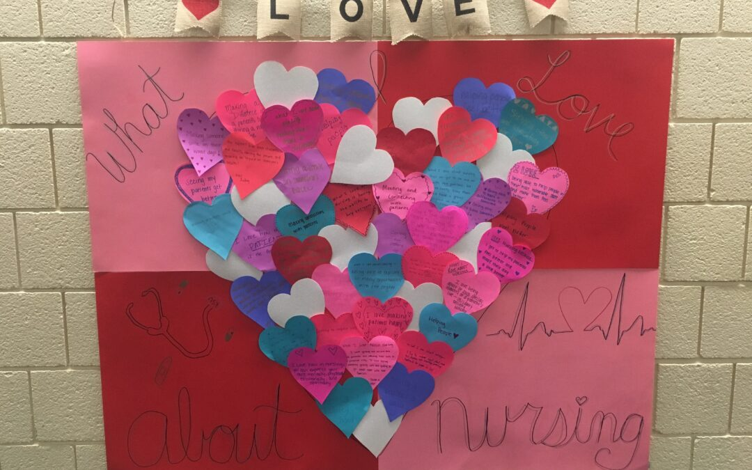 What SNA Loves About Nursing
